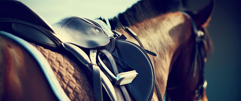 Matériel d'équitation